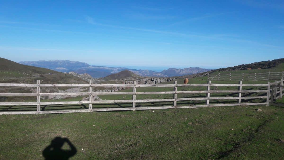 LAGO ERCINA Lagos de Covadonga, en el Principado de Asturias, dentro del Parque Nacional de los Picos de Europa.