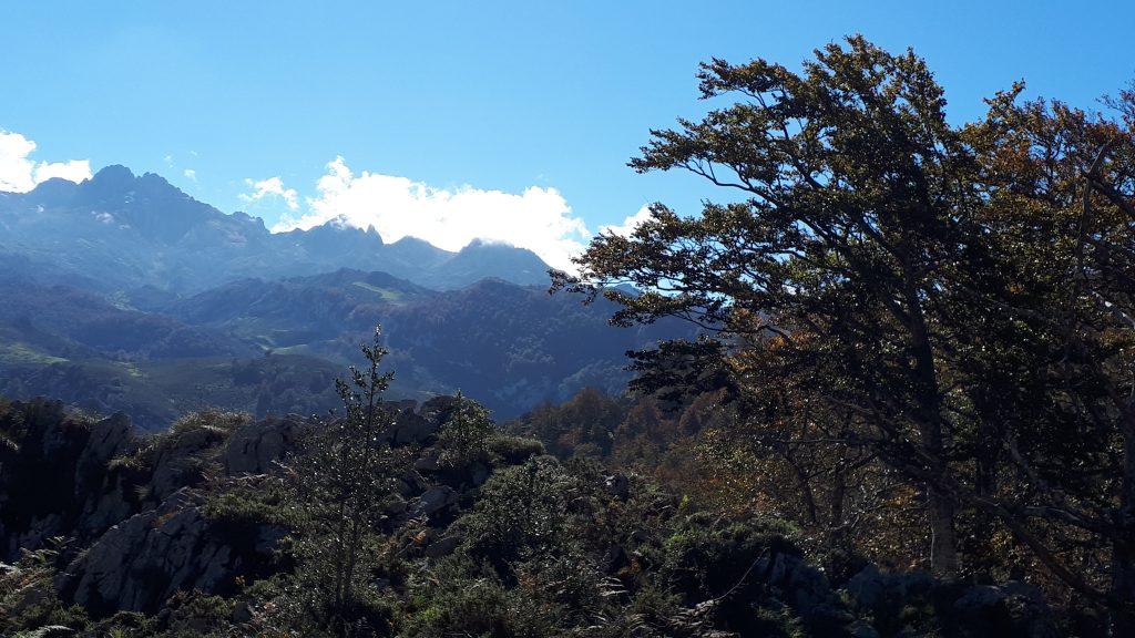 Vegas_en_Covadonga_Vega_de_Orandi_Asturias.