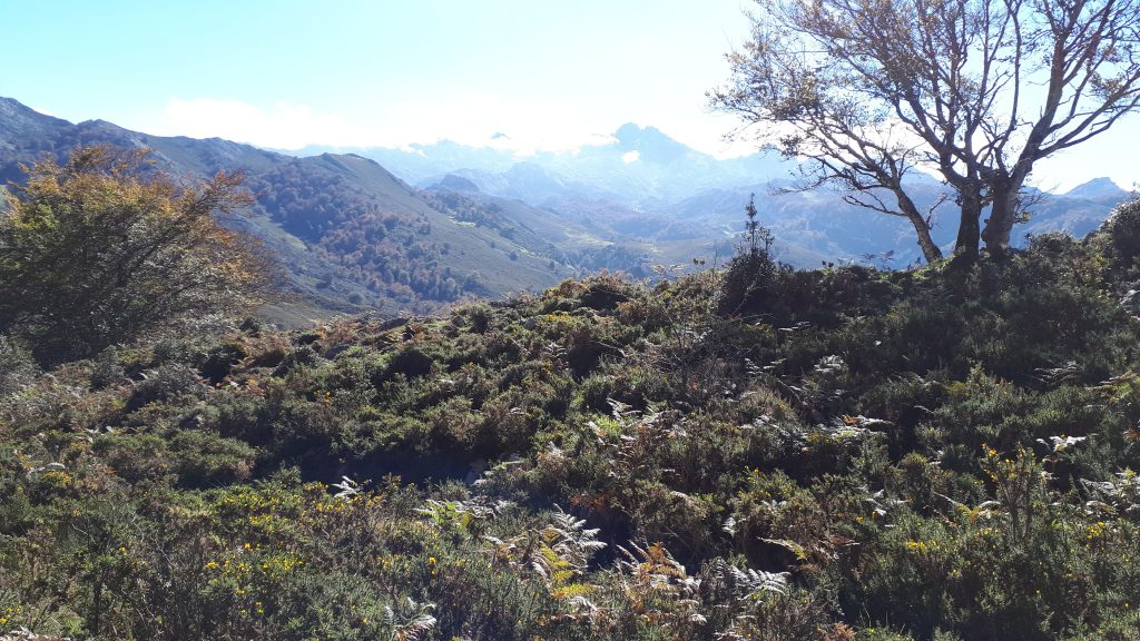 Las Vegas en Los Picos de Europa. Asturias