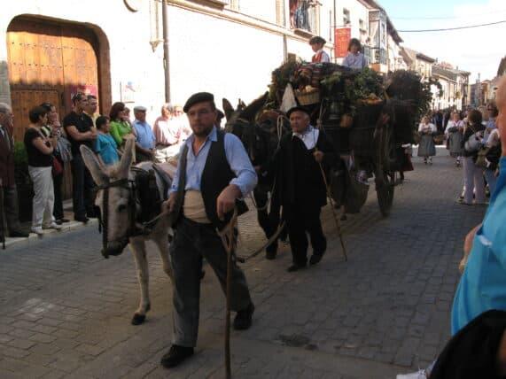 Fiesta_de_la_vendimia_en_Toro_Zamora