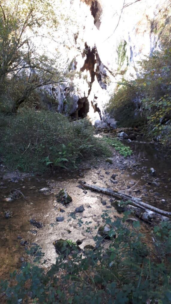 río:las:mestas_sumidero_de_Orandi_Covadonga