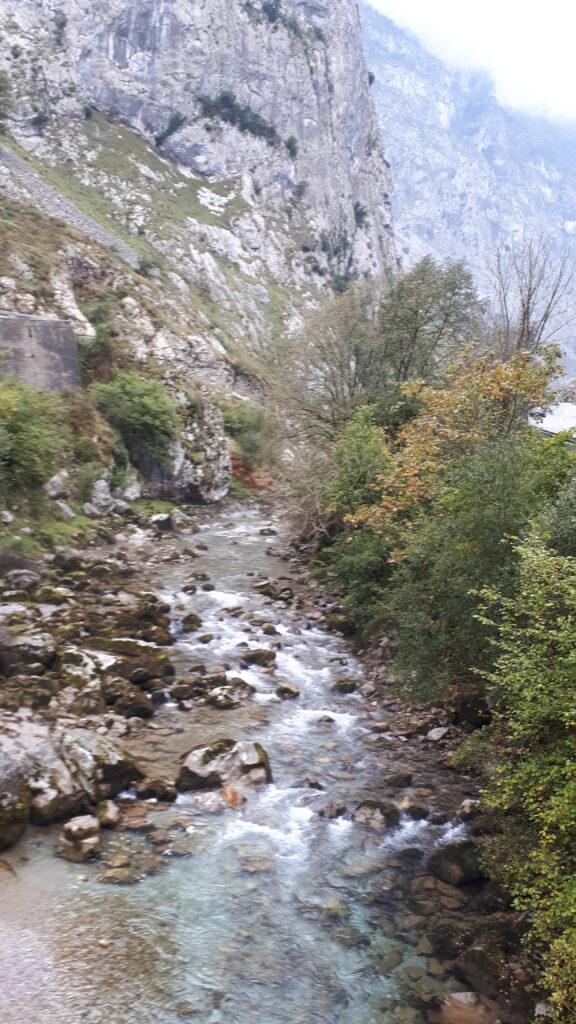 río_Duje_Poncebos_Asturias_Picos-de_Europa