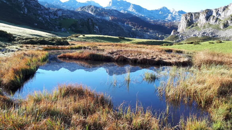 Una senda hacia el mar Cantábrico, inesperada, descubridora de emociones nuevas entre el lago Ercina (Covadonga) y Poncebos.